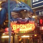 Brontos Playland
