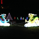 Double Dragon Animated Display at the Winter Festival of Lights