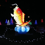 Gold Fish Korean Folk at the Winter Festival of Lights