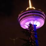 Night Shot at Skylon Tower