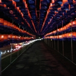 Korean Lanterns at the Winter Festival of Lights