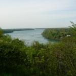 Nature in Niagara Falls
