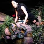 Tomb Raider Wax Figure