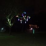 Tree Lights at the Niagara Falls Vacation