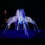 Winter Festival of Lights Animated Display