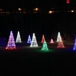 Tree Lights at Niagara Falls