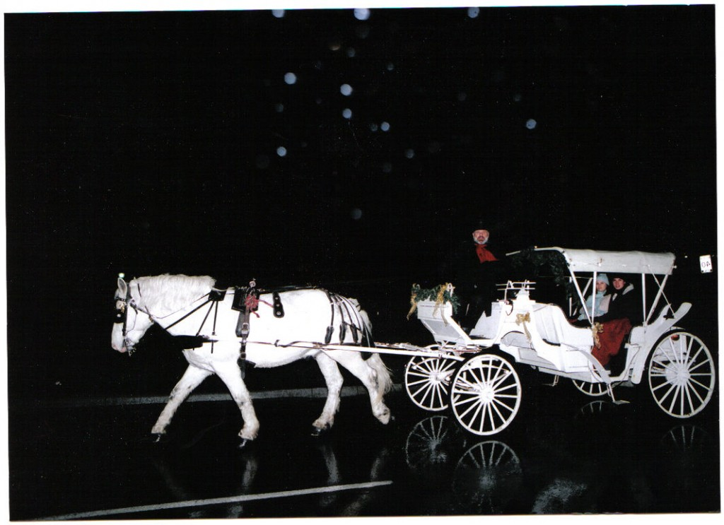 Sentineal Carriages