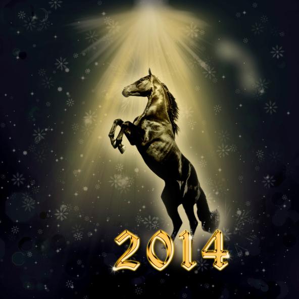 2014 Year of the Horse in Niagara Falls