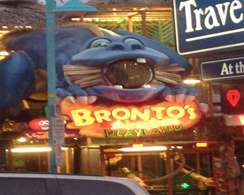 Bronto's Playland