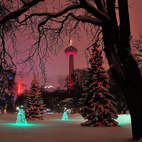 Valentine's Day Skylon Tower
