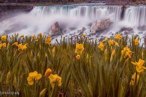 Spring in Niagara Falls