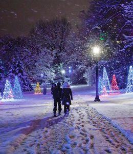 Winter Festival of Lights
